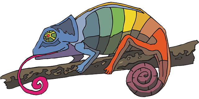 camaleon y arcoiris