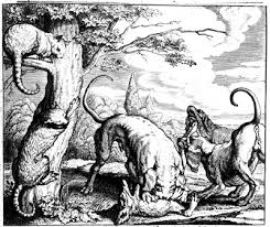 fabula de los perros y la zorra