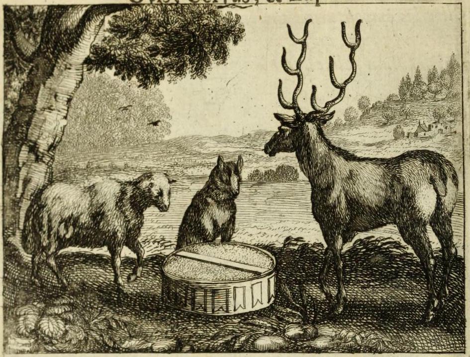 fabula de animales