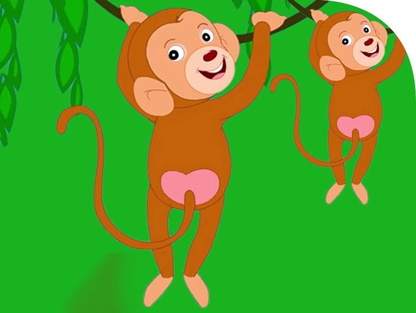 cuento del mono