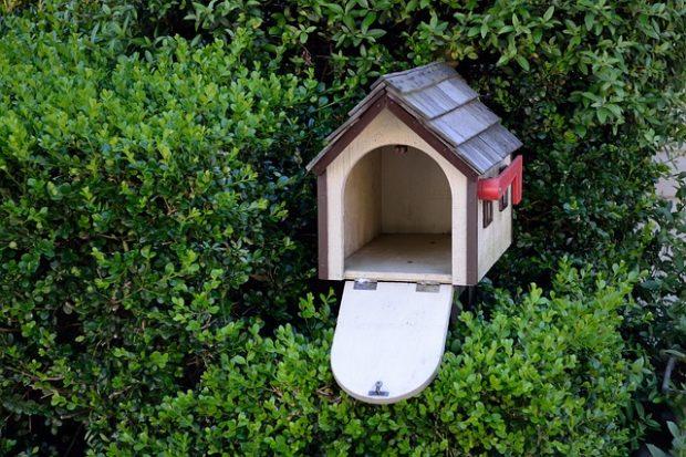 casita nido vacio