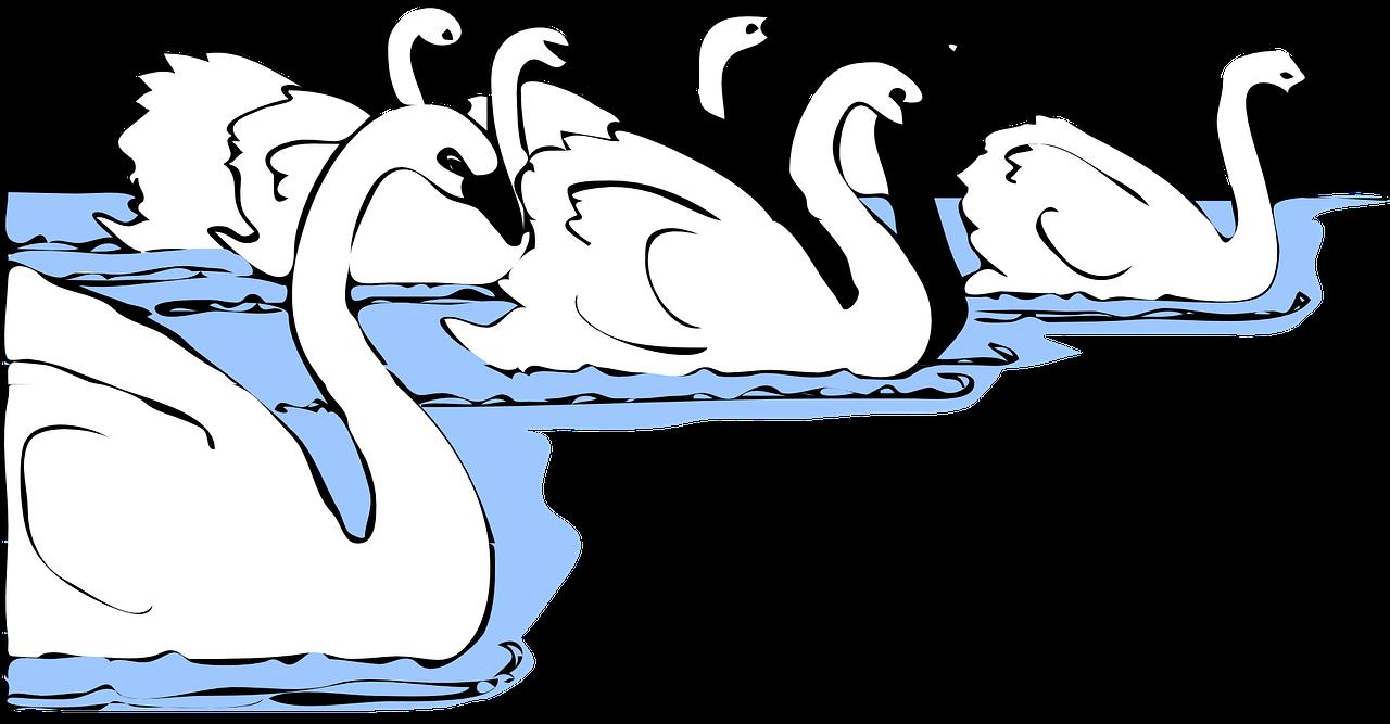 los seis cisnes - cuentos de grimm